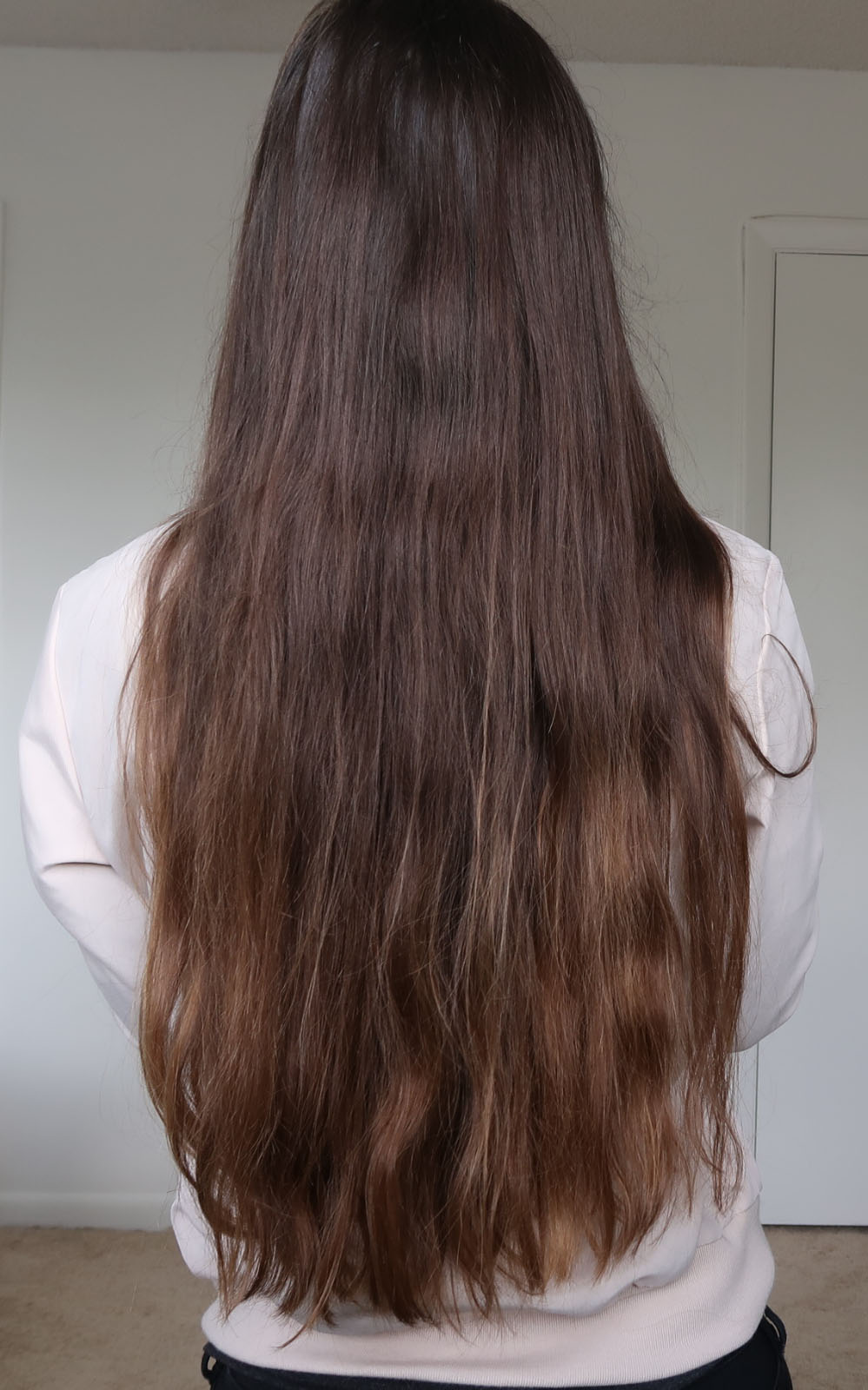 hair botox before