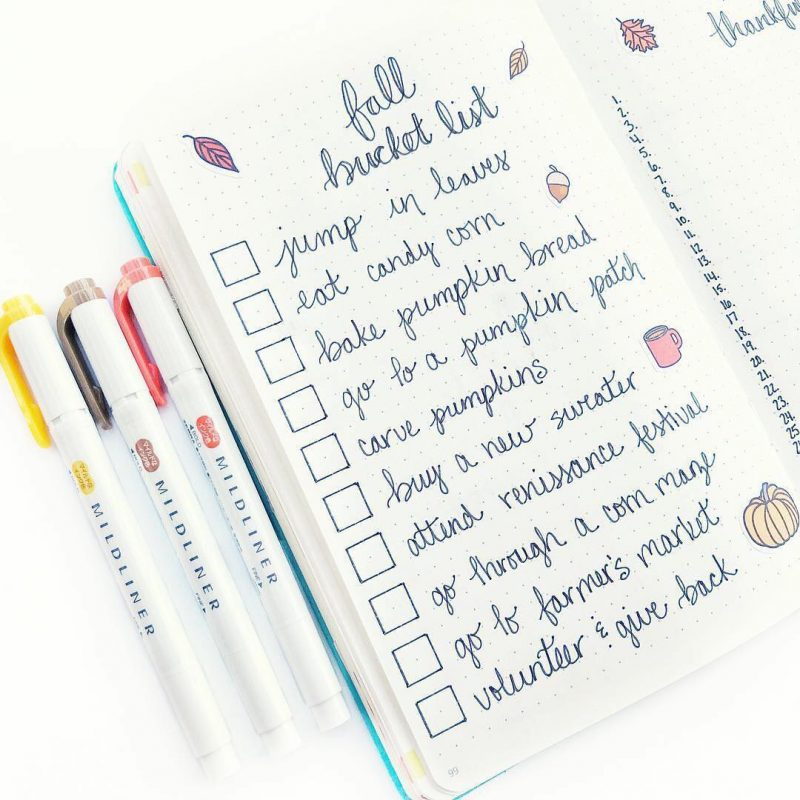 bujo collection example