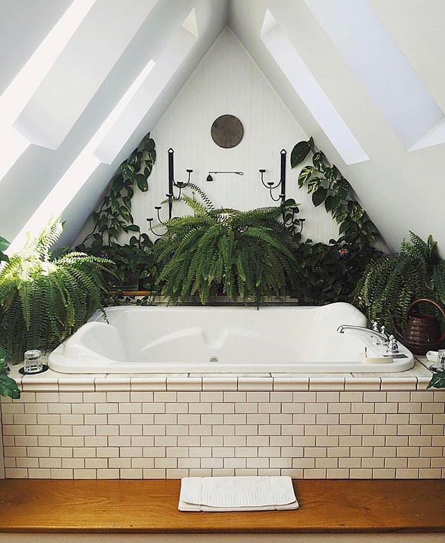 The most beautiful indoor plants perfect for apartments and even your bathroom. No green thumb required!! These low maintenance plants are perfect for living rooms and even bathrooms. Spruce up your home with the best indoor hanging plants. Learn how to hang plants in unique and fun ways. #plants