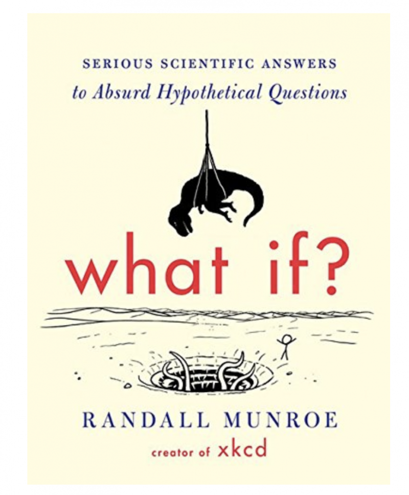 What If? Book - Perfect Gift idea For Boyfriend This Christmas