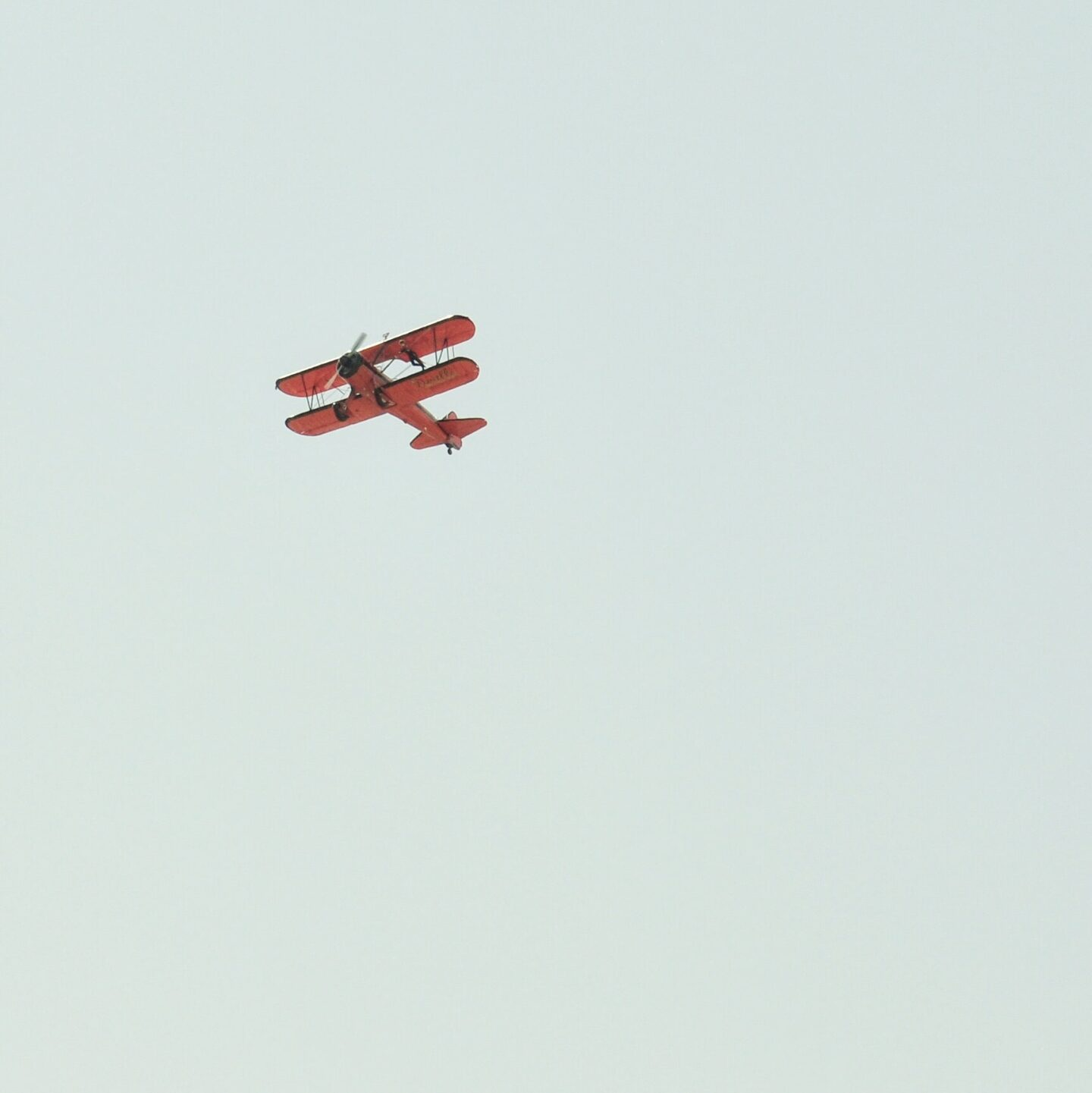 Not for the faint of heart! Wing-walking takes guts but is a daredevils must have on a bucket list